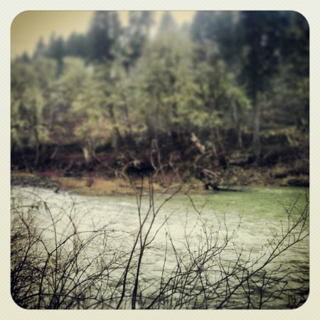 Upper Chehalis River.